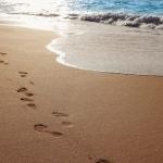 poza Descoperă plajele mătăsoase din Albena