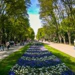 poza Grădinile Mării - Oază de relaxare în inima orașului  Varna